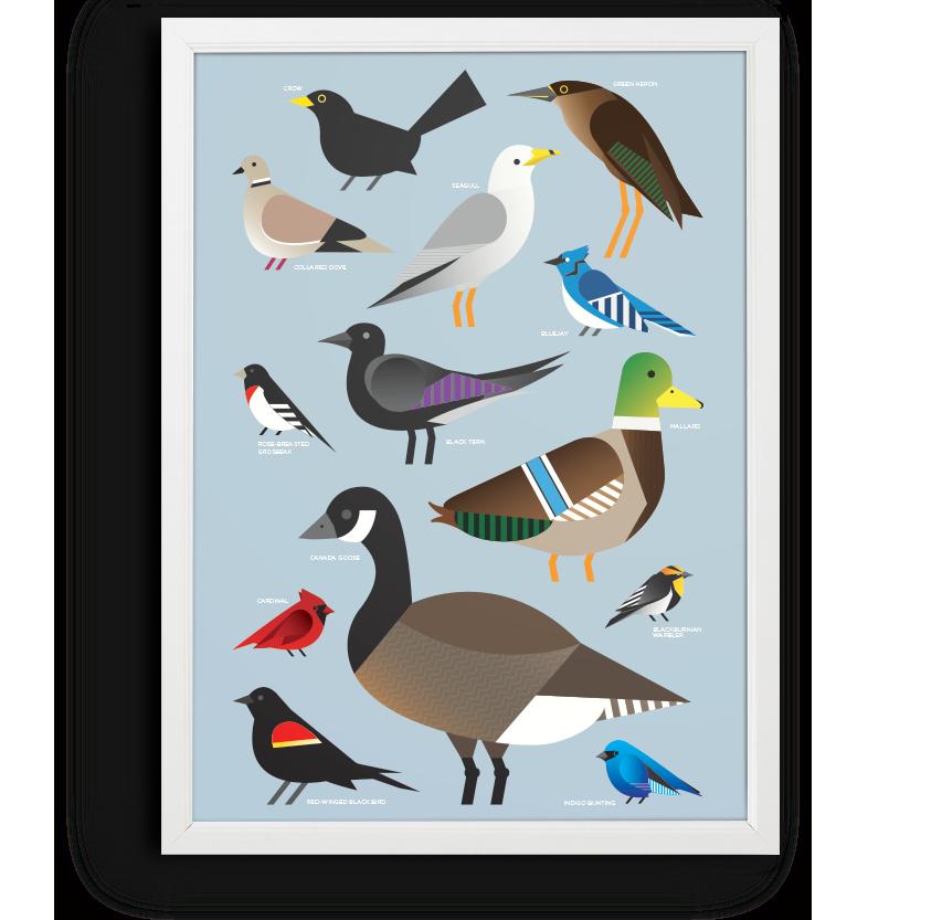 poster-birds-whitev2